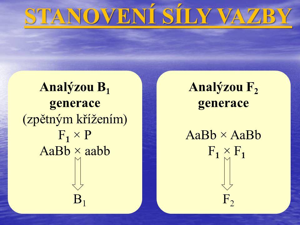 Analýzou B 1 generace (zpětným křížením) F 1 × P AaBb × aabb B 1 STANOVENÍ SÍLY VAZBY Analýzou F 2 generace AaBb × AaBb F 1 × F 1 F 2