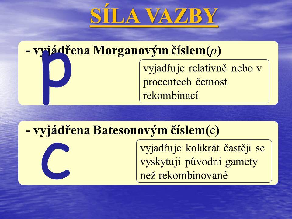 SÍLA VAZBY - vyjádřena Morganovým číslem(p) vyjadřuje relativně nebo v procentech četnost rekombinací p - vyjádřena Batesonovým číslem(c) vyjadřuje ko