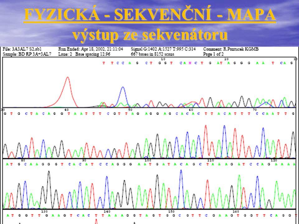 FYZICKÁ - SEKVENČNÍ - MAPA (lidský genom)........