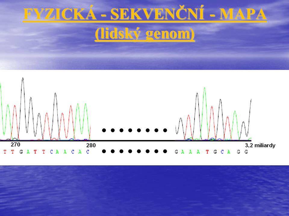 Komplexní otázky Vysvětlení vazby vloh versus volná kombinovatelnost vloh Morganovy zákony Uspořádání genů na chromozomech - Vazbové fáze Crossing over Vazba vloh úplná a neúplná Síla vazby a možnosti výpočtu jejího odhadu - Morganovo a Batessonovo číslo Hodnocení síly vazby a její využití Principy genetického (vazbového) mapování chromozomů