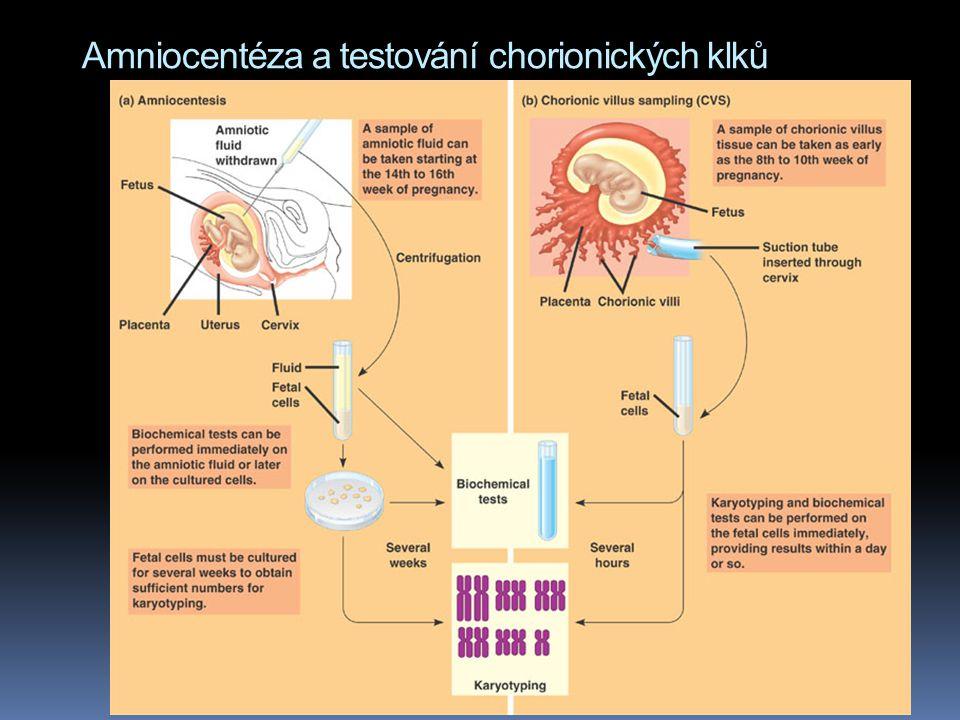 Fetální testování  amniocentéza  14 – 16 týden těhotenství  pro karyotyp ale buňky musíme nechat několik týdnů růst  cca 1% riziko krvácení či pot
