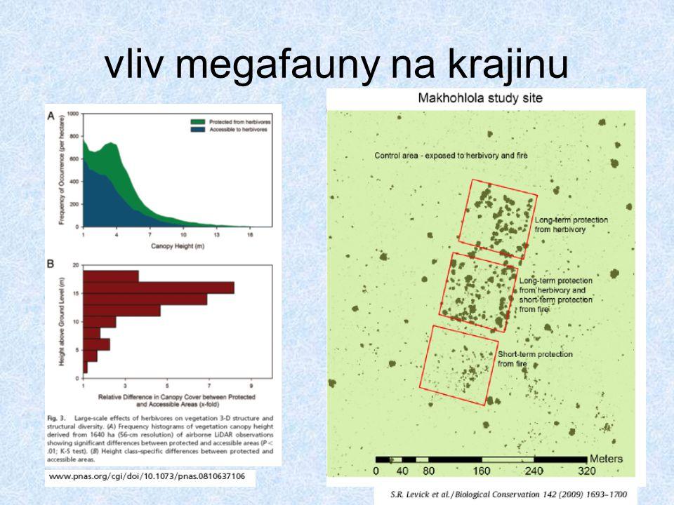 vliv megafauny na krajinu