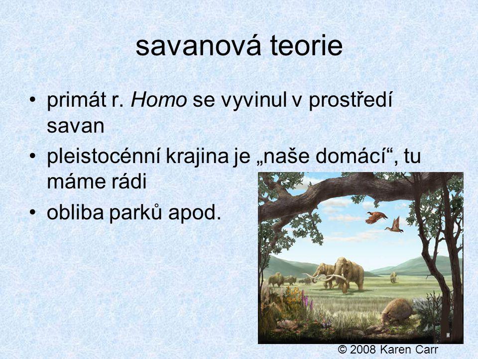 savanová teorie primát r.