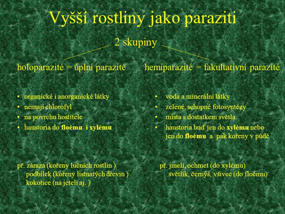 Vyšší rostliny jako paraziti organické i anorganické látky nemají chlorofyl na povrchu hostitele haustoria do floému i xylému voda a minerální látky z