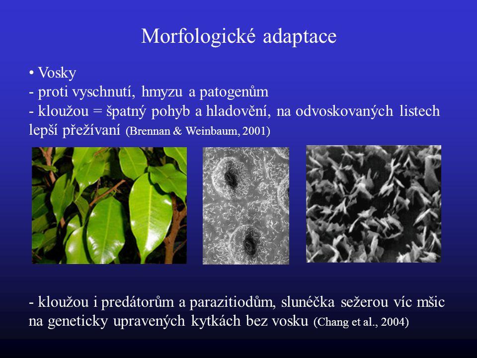 Morfologické adaptace Vosky - proti vyschnutí, hmyzu a patogenům - kloužou = špatný pohyb a hladovění, na odvoskovaných listech lepší přežívaní (Brennan & Weinbaum, 2001) - kloužou i predátorům a parazitiodům, slunéčka sežerou víc mšic na geneticky upravených kytkách bez vosku (Chang et al., 2004)