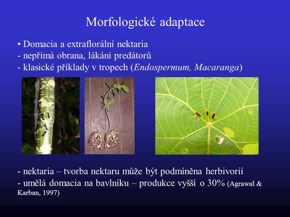 Morfologické adaptace Domacia a extraflorální nektaria - nepřímá obrana, lákání predátorů - klasické příklady v tropech (Endospermum, Macaranga) - nektaria – tvorba nektaru může být podmíněna herbivorií - umělá domacia na bavlníku – produkce vyšší o 30% (Agrawal & Karban, 1997)
