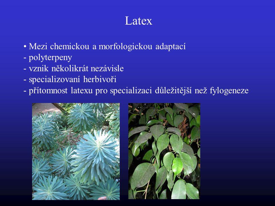 Latex Mezi chemickou a morfologickou adaptací - polyterpeny - vznik několikrát nezávisle - specializovaní herbivoři - přítomnost latexu pro specializaci důležitější než fylogeneze