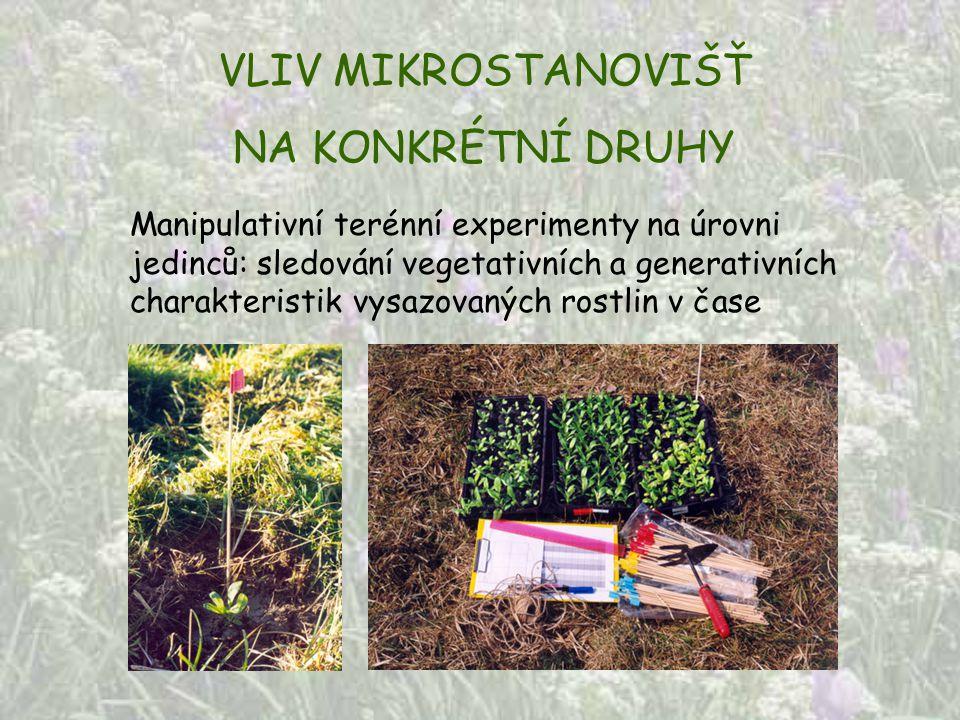VLIV MIKROSTANOVIŠŤ NA KONKRÉTNÍ DRUHY Manipulativní terénní experimenty na úrovni jedinců: sledování vegetativních a generativních charakteristik vys