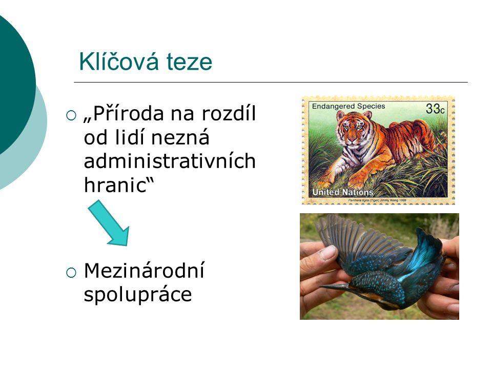 ČR a mezinárodní úmluvy na ochranu přírody  ČR je signatářem tzv. velké pětky a dále většiny evropských úmluv plus některých antarktických úmluv
