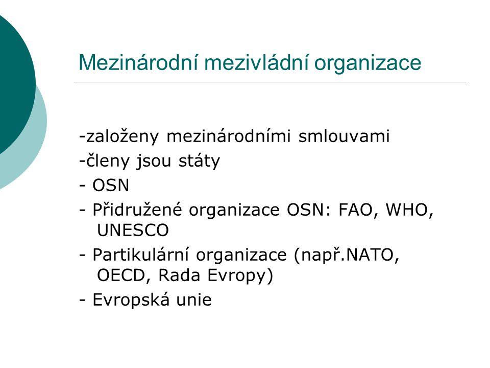Mezinárodní mezivládní organizace -založeny mezinárodními smlouvami -členy jsou státy - OSN - Přidružené organizace OSN: FAO, WHO, UNESCO - Partikulární organizace (např.NATO, OECD, Rada Evropy) - Evropská unie