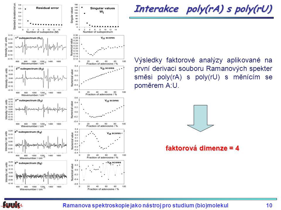 Ramanova spektroskopie jako nástroj pro studium (bio)molekul10 Interakce poly(rA) s poly(rU) Výsledky faktorové analýzy aplikované na první derivaci souboru Ramanových spekter směsi poly(rA) s poly(rU) s měnícím se poměrem A:U.