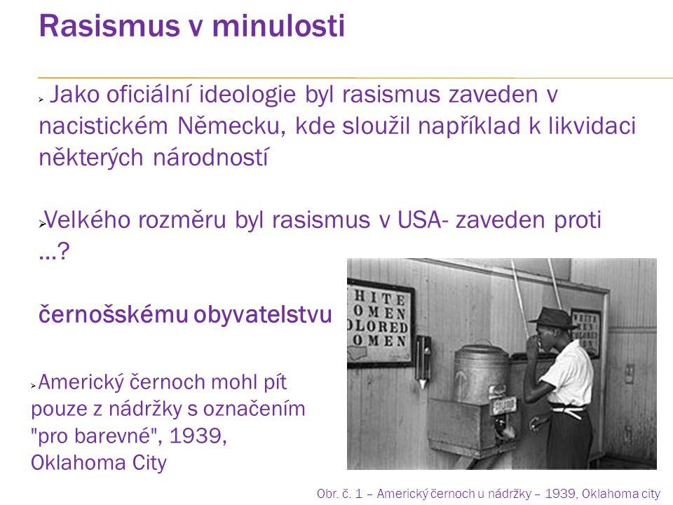 Rasismus v ČR  Problematika rasismu v ČR – především ke vztahu k....