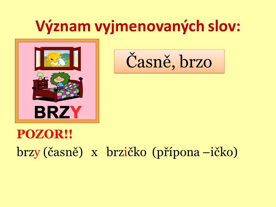 Význam vyjmenovaných slov: POZOR!! brzy (časně) x brzičko (přípona –ičko) Časně, brzo Časně, brzo