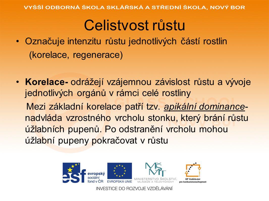 POUŽITÉ ZDROJE: www.glassschool.cz KUBÁT A KOL.Botanika.