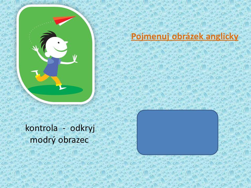 kontrola - odkryj modrý obrazec Pojmenuj obrázek anglicky
