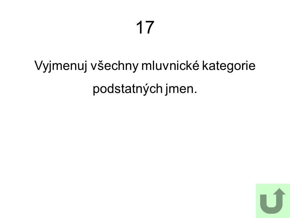 17 Jak Vyjmenuj všechny mluvnické kategorie podstatných jmen.