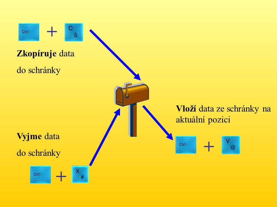 Zkopíruje data do schránky Vyjme data do schránky Vloží data ze schránky na aktuální pozici + + +
