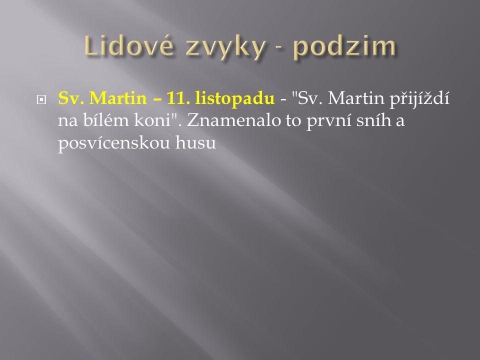  Sv. Martin – 11. listopadu -