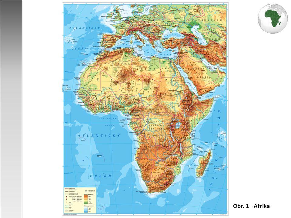 převládají roviny a plošiny Afrického štítu - chybí protáhlá horská pásma pevninský štít byl v průběhu vývoje rozlámán na kry a zprohýbán v pánve a klenby ke štítu se připojují pohoří vzniklá v průběhu hercynského a alpínského vrásnění - pohoří Atlas a Kapské hory tektonické pohyby v průběhu třetihor způsobily vznik Etiopské vysočiny, sopečných kuželů (např.