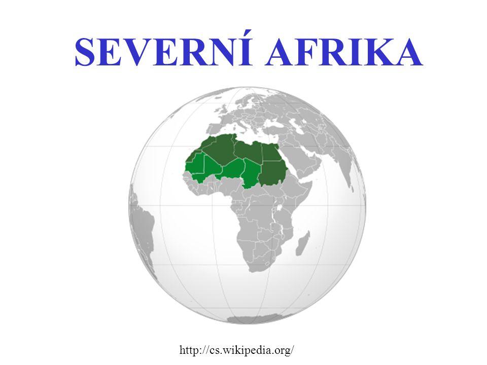 Severní Afrika zahrnuje tyto státy: Egypt Libye Tunisko Alžírsko Maroko Západní Sahara – okupovaná Marokem