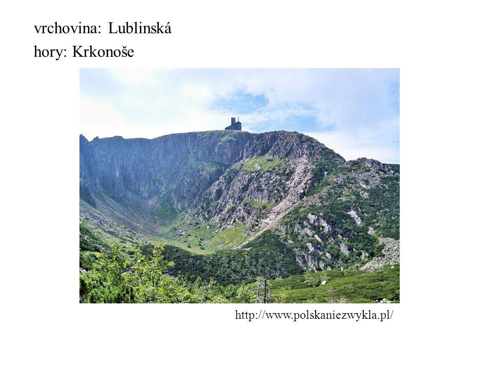 povrch zvedá se od S k J nížiny: Pobaltská, Velkopolská, Mazovská http://cs.wikipedia.org/