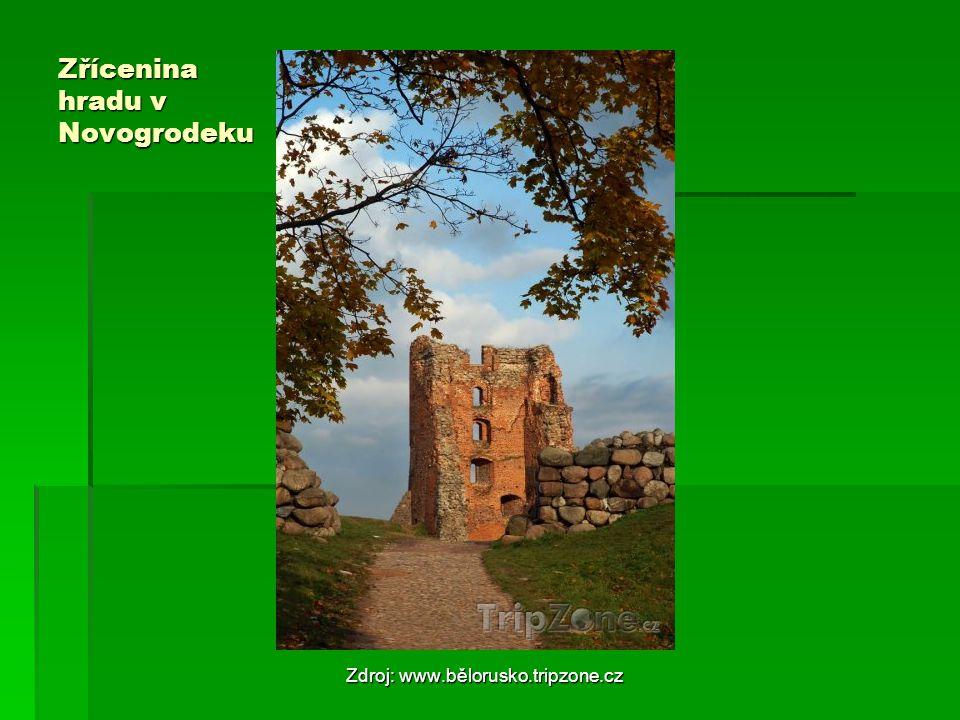Zřícenina hradu v Novogrodeku Zdroj: www.bělorusko.tripzone.cz