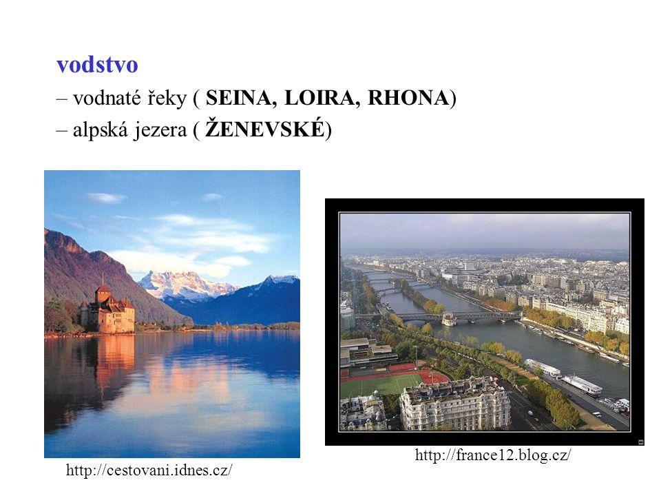 vodstvo – vodnaté řeky ( SEINA, LOIRA, RHONA) – alpská jezera ( ŽENEVSKÉ) http://cestovani.idnes.cz/ http://france12.blog.cz/