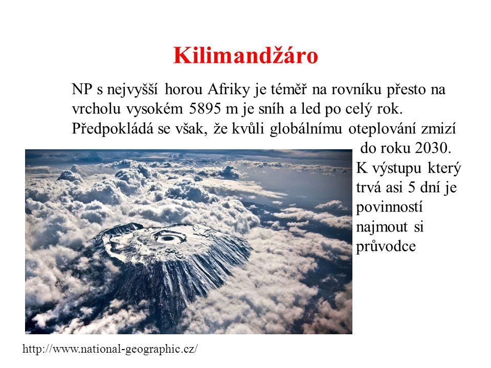 Kilimandžáro NP s nejvyšší horou Afriky je téměř na rovníku přesto na vrcholu vysokém 5895 m je sníh a led po celý rok. Předpokládá se však, že kvůli