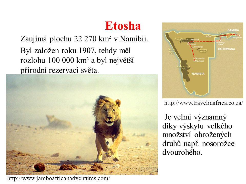 Etosha Zaujímá plochu 22 270 km² v Namibii. Byl založen roku 1907, tehdy měl rozlohu 100 000 km² a byl největší přírodní rezervací světa. http://www.t