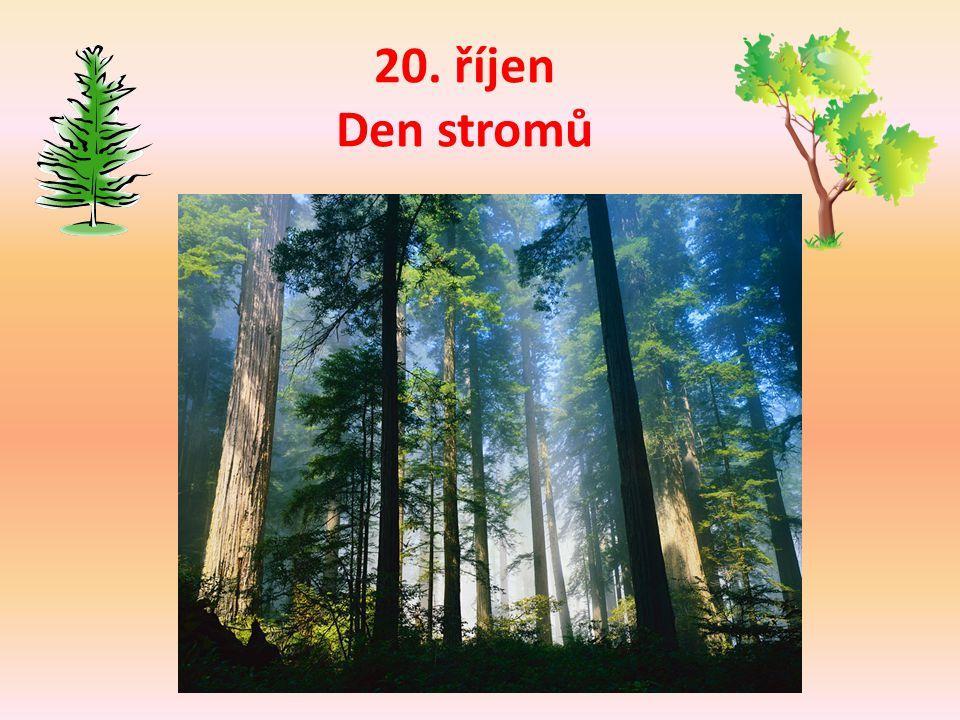 Ochrana lesa Choďte tiše Neodhazuj odpadky Choď po vyznačených cestách Chraň přírodu Nezakládej oheň Respektuj značení Nenič obydlí zvířat Neubližuj zvěři