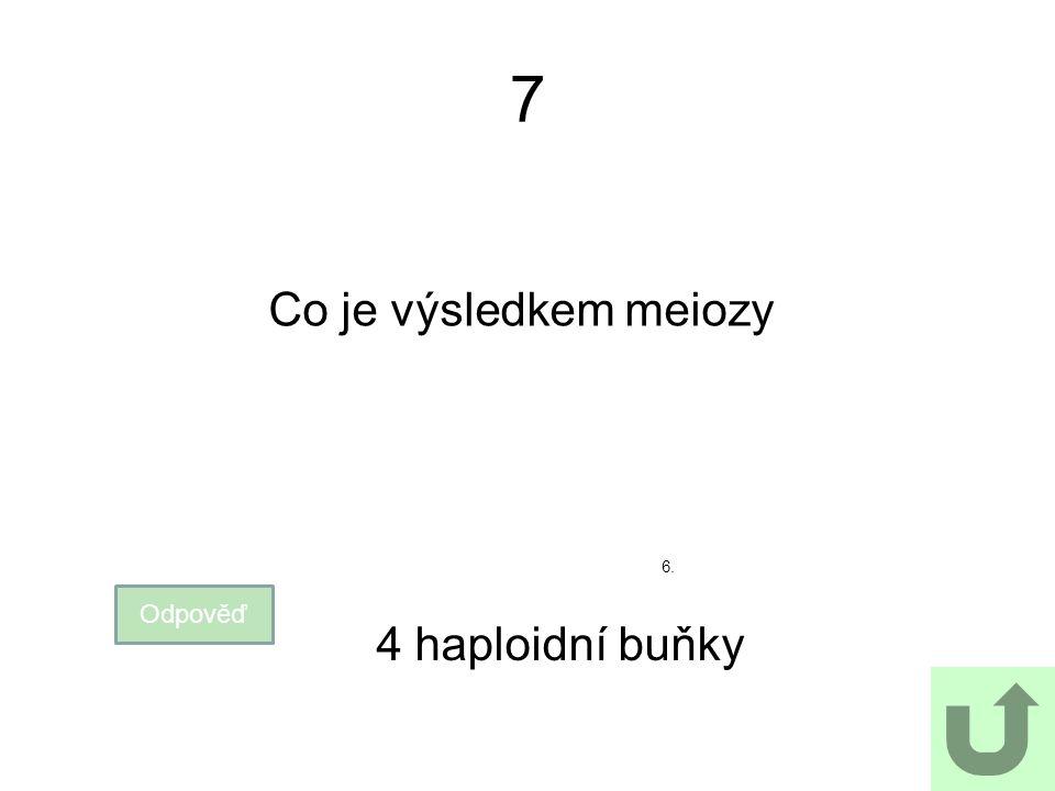 7 Co je výsledkem meiozy Odpověď 4 haploidní buňky 6.