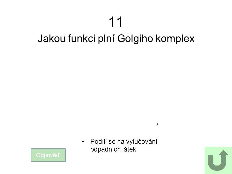 11 Jakou funkci plní Golgiho komplex Odpověď Podílí se na vylučování odpadních látek 8.