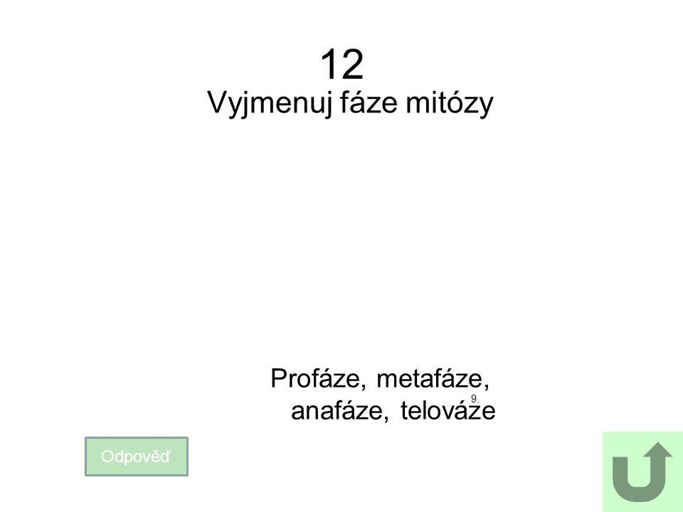 12 Vyjmenuj fáze mitózy Odpověď Profáze, metafáze, anafáze, telováze 9.