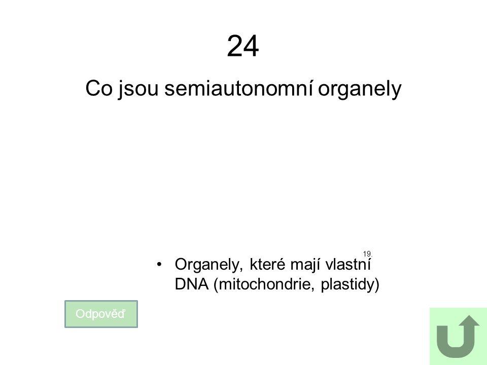 24 Co jsou semiautonomní organely Odpověď Organely, které mají vlastní DNA (mitochondrie, plastidy) 19.