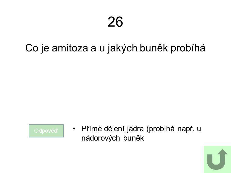 26 Co je amitoza a u jakých buněk probíhá Odpověď Přímé dělení jádra (probíhá např. u nádorových buněk