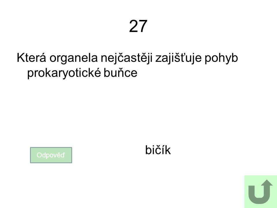 27 Která organela nejčastěji zajišťuje pohyb prokaryotické buňce Odpověď bičík