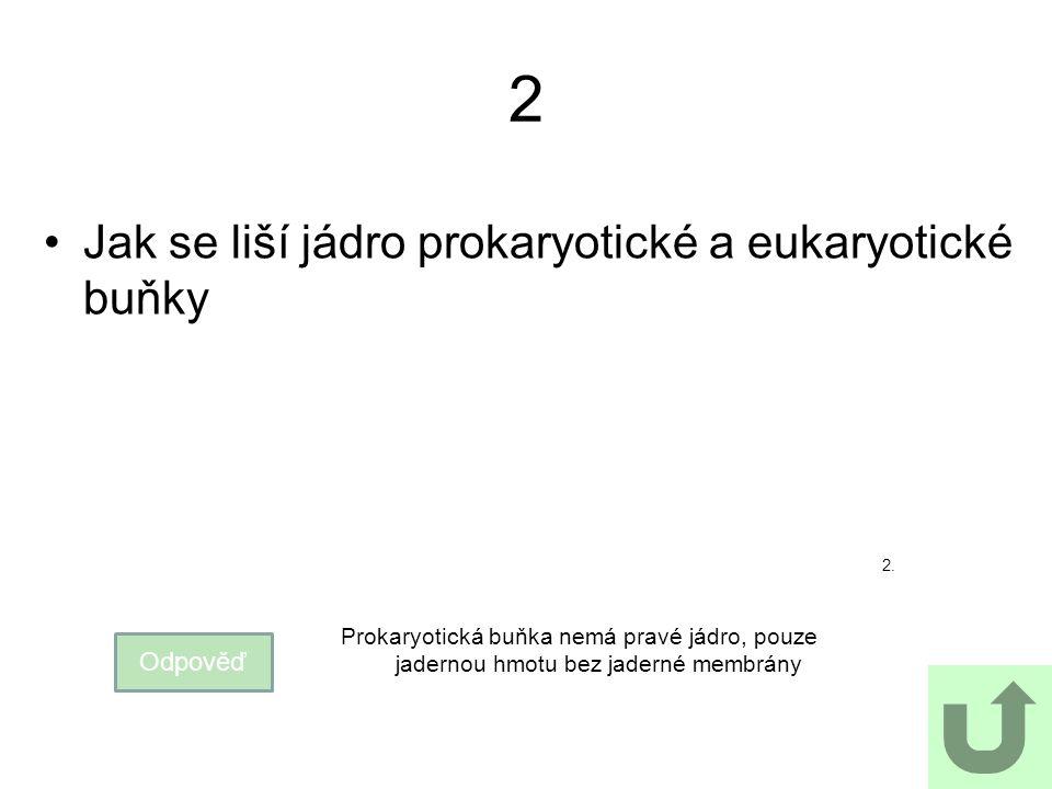 2 Jak se liší jádro prokaryotické a eukaryotické buňky Odpověď Prokaryotická buňka nemá pravé jádro, pouze jadernou hmotu bez jaderné membrány 2.