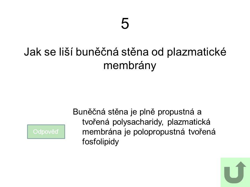 5 Jak se liší buněčná stěna od plazmatické membrány Odpověď Buněčná stěna je plně propustná a tvořená polysacharidy, plazmatická membrána je polopropu