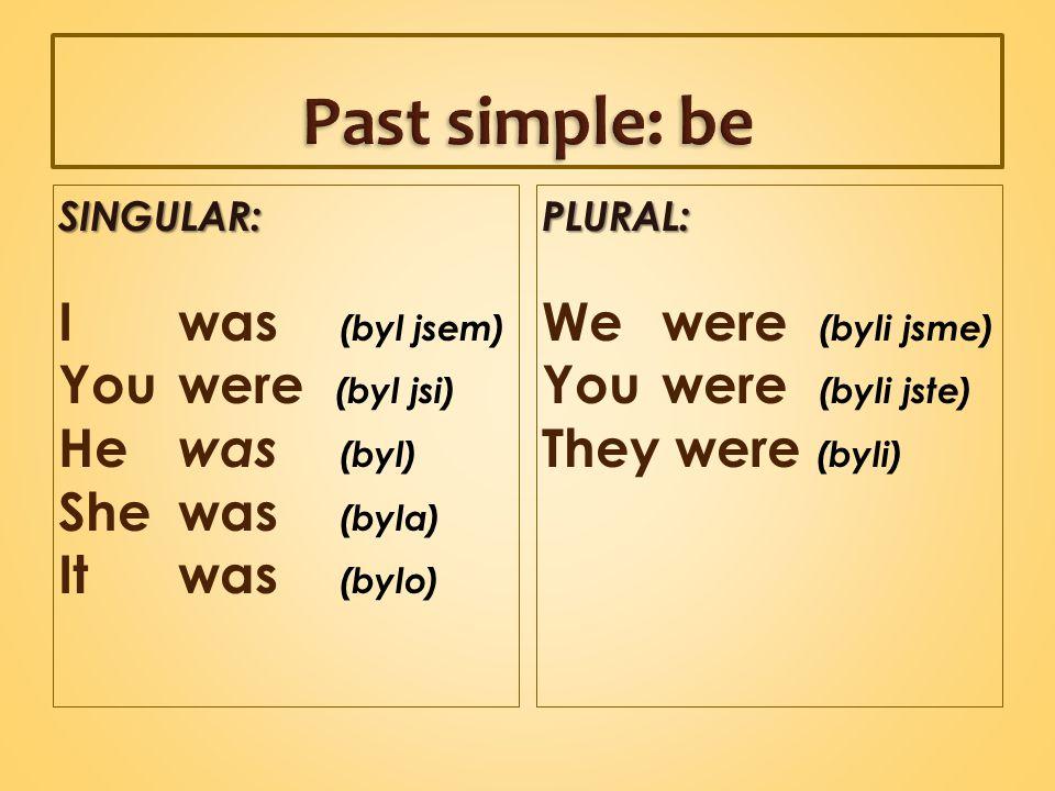SINGULAR: I was (byl jsem) You were (byl jsi) He was (byl) She was (byla) It was (bylo)PLURAL: We were (byli jsme) You were (byli jste) They were (byli)