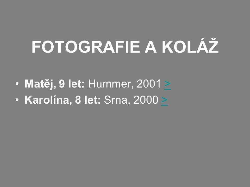 FOTOGRAFIE A KOLÁŽ Matěj, 9 let: Hummer, 2001 >> Karolína, 8 let: Srna, 2000 >>