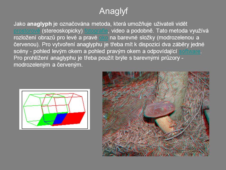 Jako anaglyph je označována metoda, která umožňuje uživateli vidět prostorově (stereoskopicky) fotografie, video a podobně. Tato metoda využívá rozlož
