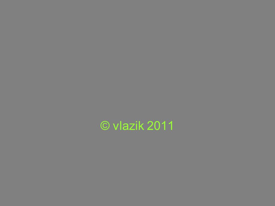 © vlazik 2011