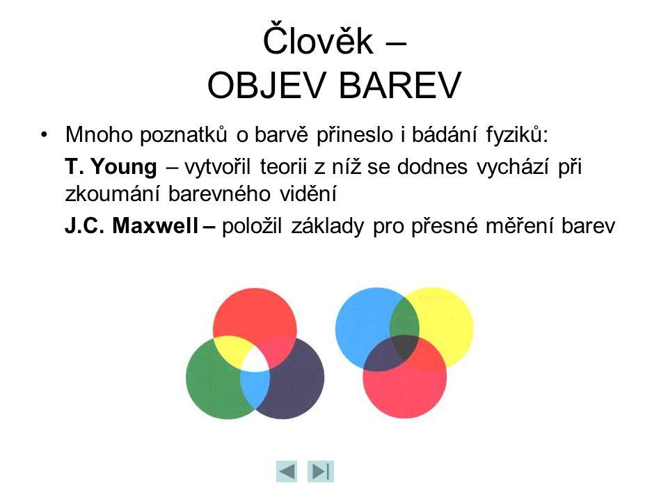 Člověk – OBJEV BAREV Mnoho poznatků o barvě přineslo i bádání fyziků: T. Young – vytvořil teorii z níž se dodnes vychází při zkoumání barevného vidění