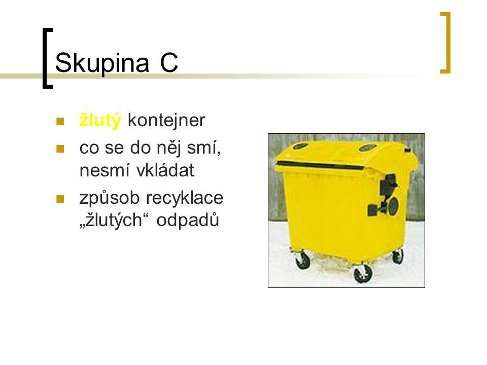 Skupina B modrý kontejner co se do něj smí, nesmí vkládat rozdělení odpadů na recyklovatelné (způsob recyklace) a nerecyklovatelné