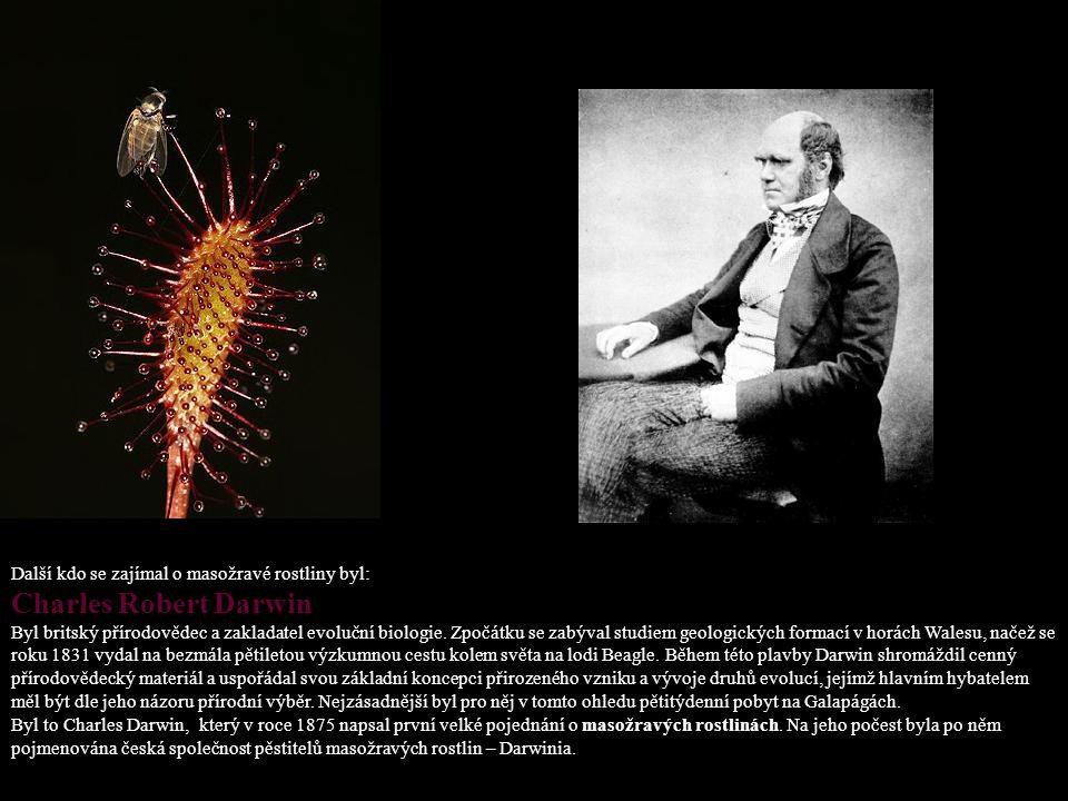 Další kdo se zajímal o masožravé rostliny byl: Charles Robert Darwin Byl britský přírodovědec a zakladatel evoluční biologie.