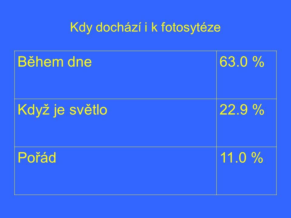 Kdy dochází i k fotosytéze Během dne63.0 % Když je světlo22.9 % Pořád11.0 %