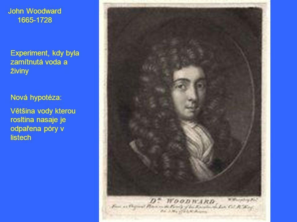 John Woodward 1665-1728 Experiment, kdy byla zamítnutá voda a živiny Nová hypotéza: Většina vody kterou rosltina nasaje je odpařena póry v listech