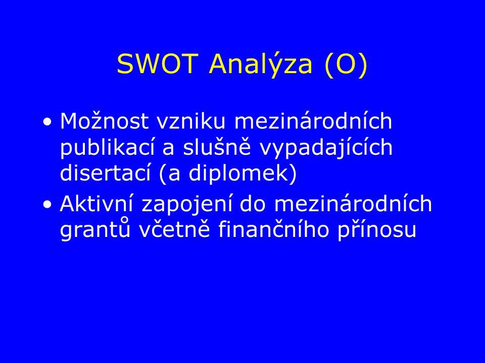 SWOT Analýza (O) Možnost vzniku mezinárodních publikací a slušně vypadajících disertací (a diplomek) Aktivní zapojení do mezinárodních grantů včetně finančního přínosu