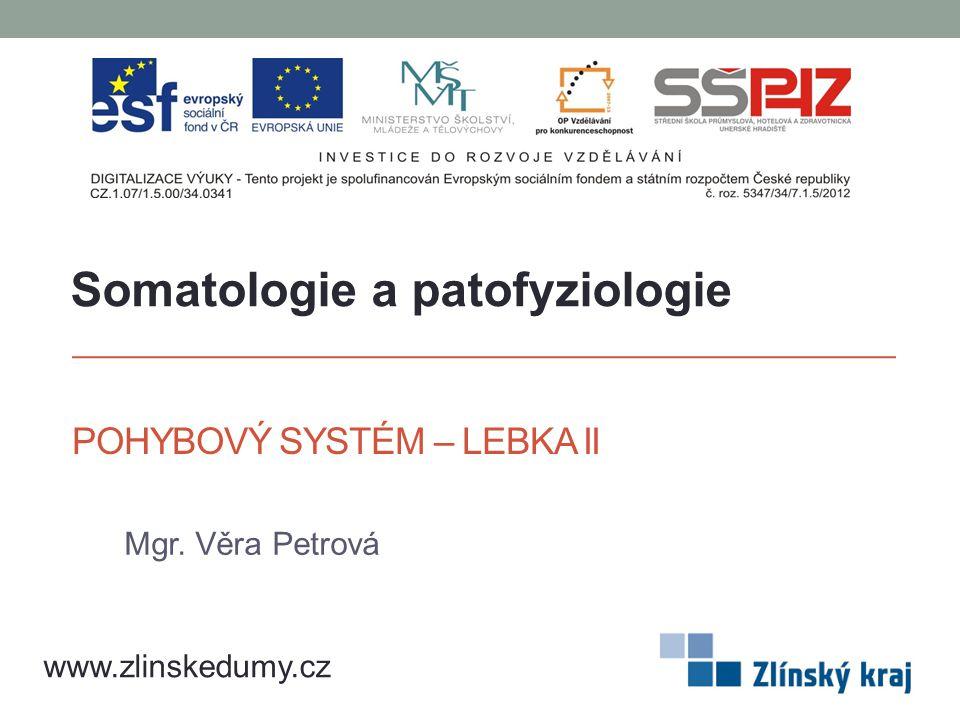 POHYBOVÝ SYSTÉM – LEBKA II Mgr. Věra Petrová www.zlinskedumy.cz Somatologie a patofyziologie