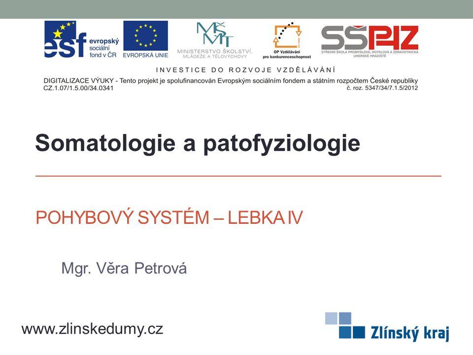 POHYBOVÝ SYSTÉM – LEBKA IV Mgr. Věra Petrová www.zlinskedumy.cz Somatologie a patofyziologie